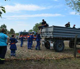Verladung des Laubes auf dem Anhänger der Agrargenossenschaft Forst (Lausitz)